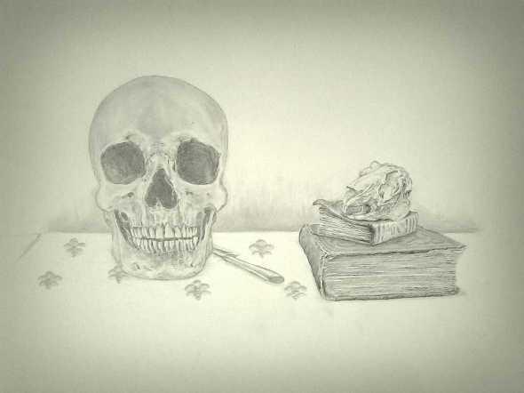 Human & Bunny Skull Study, Graphite 42x59.4 cm