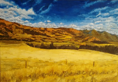 Mackenzie Country, New Zealand   Oil on Canvas, 70 x 100 cm