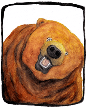 bear-selfie_sticker.png